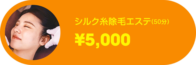 シルク糸除毛エステ(50分)
